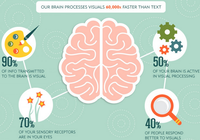 brain-process-visual-faster